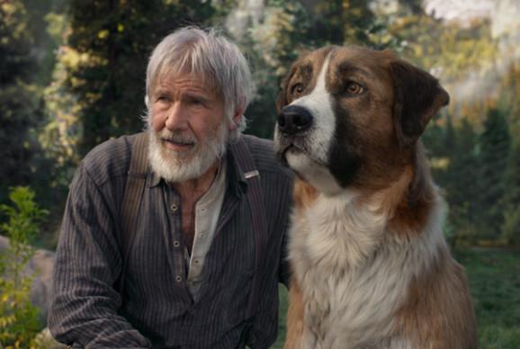 Sortie cinéma : L'appel de la forêt