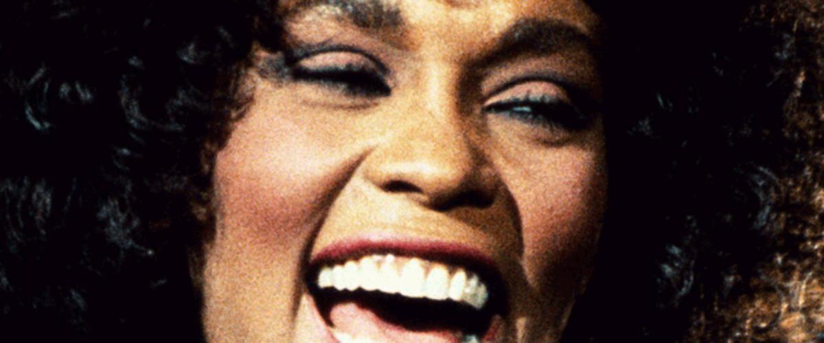 """Whitney"" de Kevin McDonald"